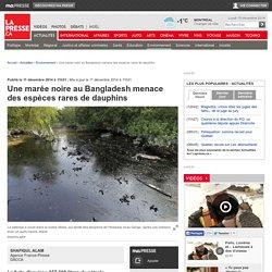 Une marée noire au Bangladesh menace des espèces rares de dauphins