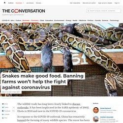 THECONVERSATION 15/03/20 Snakes make good food. Banning farms won't help the fight against coronavirus