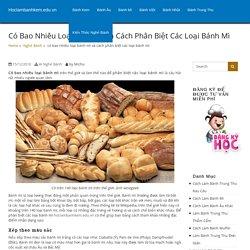 có bao nhiêu loại bánh mì và cách phân biệt các loại bánh mì