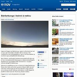 Bárðarbunga í beinni á netinu