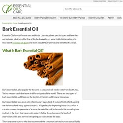 Bark Essential Oil And Its Known Uses - Essential Oils Care