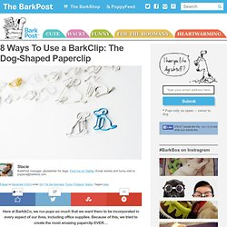 8 Ways To Use a BarkClip: The Dog-Shaped Paperclip - Barkpost - Blog From the Pups at BarkBox