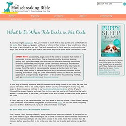 Barking in the Crate - Train Your Dog to be Quiet - The Housebreaking Bible