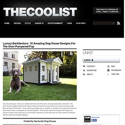 Dog House Designs: 10 Amazing Examples of Luxury Canine Casas