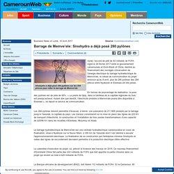 Barrage de Memve'ele: Sinohydro a déjà posé 280 pylônes