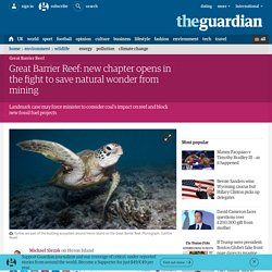 Great Barrier Reef: new chapter opens in the fight to save natural wonder from mining