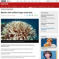 Barrier reef suffers huge coral loss