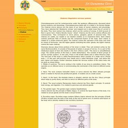 Basava Dharma - Philosophy