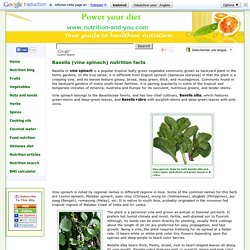 Basella (Malabar spinach) nutrition facts and health benefits