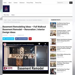 Basement Remodeling Ideas - Full Walkout Basement Remodel - Renovation