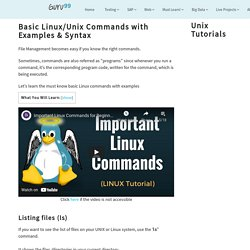 Basic Linux/Unix Commands with Examples