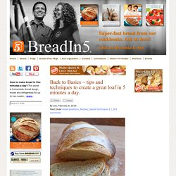 Artisan Bread in Five Minutes a Day & Back to Basics ~ tips and...