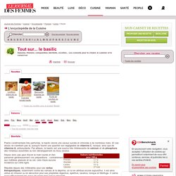 BASILIC : tout sur le basilic, recettes, saison du basilic sur Journal des Femmes Cuisine