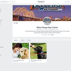 Baton Rouge Dog Trainer Profile on Fancy