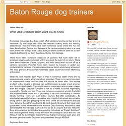 Baton Rouge dog trainers: What Dog Groomers Don't Want You to Know