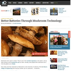 Better Batteries Through Mushroom Technology
