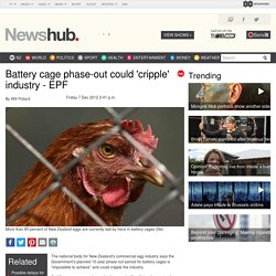 Battery cage phaseout could cripple industry EPF