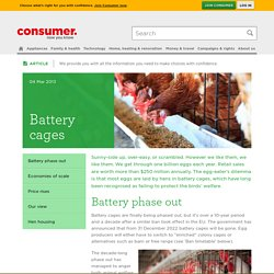 Battery cages - poultry and chicken coop - Consumer NZ