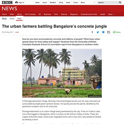 The urban farmers battling Bangalore's concrete jungle