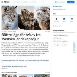Bättre läge för två av tre svenska landskapsdjur
