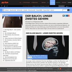 Der Bauch, unser zweites Gehirn