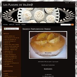 Bavarois Pamplemousse Orange - Les Plaisirs de Val ri@