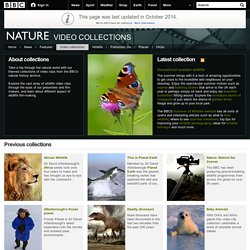 BBC Nature - Collections