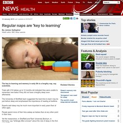 Regular naps are 'key to learning'