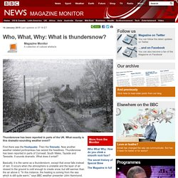 Who, What, Why: What is thundersnow?