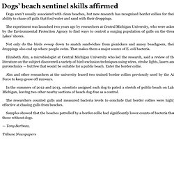 Dogs' beach sentinel skills affirmed 5/27/14