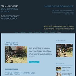 Palm Springs Canine School Blog