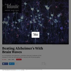 Beating Alzheimer's With Brain Waves - The Atlantic