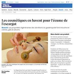 Beauté: Les cosmétiques en bavent pour l'écume de l'escargot - Savoir