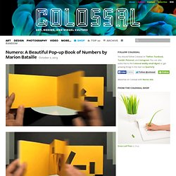 Numero: A Beautiful Pop-up Book of Numbers by Marion Bataille
