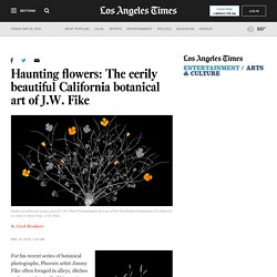 Haunting flowers: The eerily beautiful California botanical art of J.W. Fike