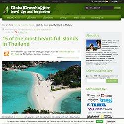 www.globalgrasshopper