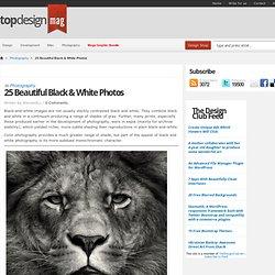 25 Beautiful Black & White Photos