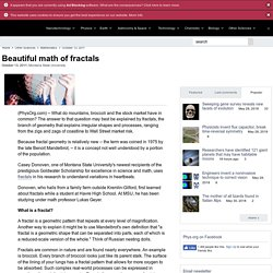Beautiful math of fractals