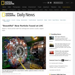 """Beautiful"" New Particle Found at LHC"