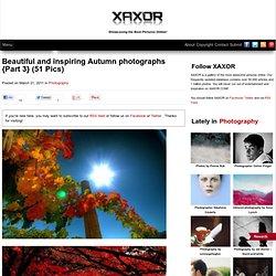 Beautiful and inspiring Autumn photographs {Part 3}