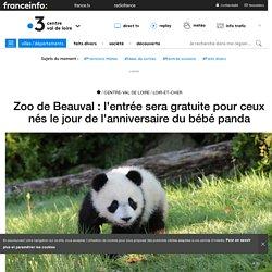 Zoo de Beauval : l'entrée sera gratuite pour ceux nés le jour de l'anniversaire du bébé panda - France 3 Centre-Val de Loire