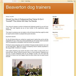 Beaverton dog trainers: Should You Hire A Professional Dog Trainer Or Do It Yourself? This Article Will Help You Decide