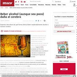 Beber alcohol (aunque sea poco) daña el cerebro