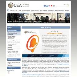 OEA Becas