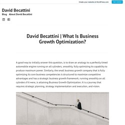 What Is Business Growth Optimization? – David Becattini