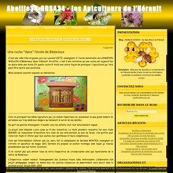 """Une ruche """"dans"""" l'école de Bédarieux - Abeille34-GDSA34 - les Apiculteurs de l'Hérault"""