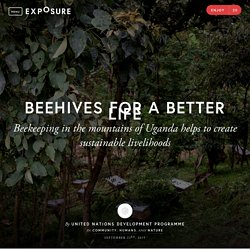 Beehives for a Better Life by United Nations Development Programme