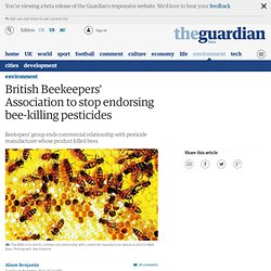 British Beekeepers Association to stop endorsing bee-killing pesticides | Environment