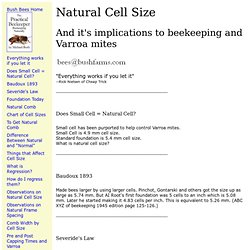 Natural Cell Size, small cell bees, small cell beekeeping, regression, natural beekeeping, Bush Bees, foundationless frames, organic beekeeping