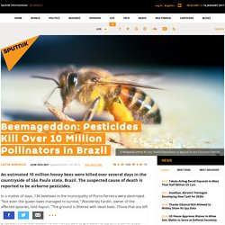 SPUTNIK 11/01/17 Beemageddon: Pesticides Kill Over 10 Million Pollinators in Brazil